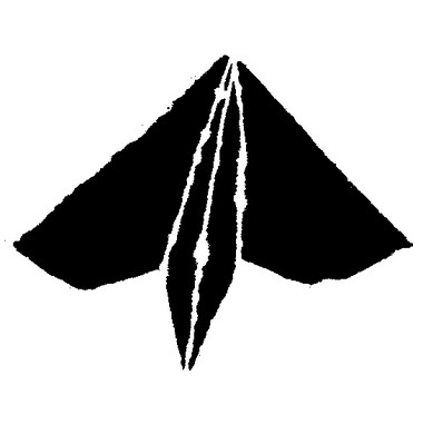 K672017kamihikoooki