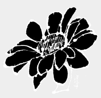 K6252017dadabiraki2