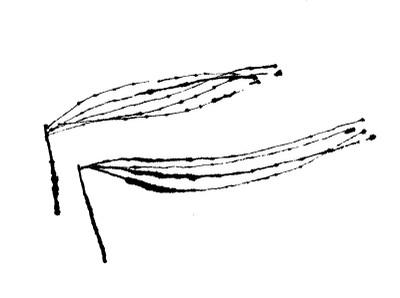 K9122017hirara